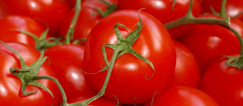 Koolhydraatarm tomaten 800x350px
