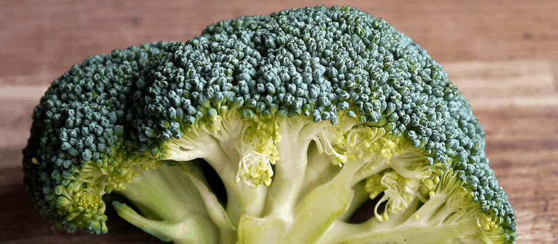 broccolisoep 800x350px