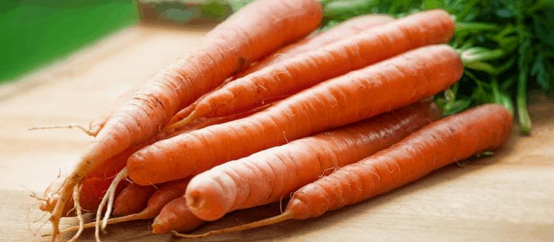 hutspot recept wortelen 800x350px