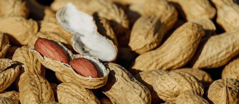 Is pindakaas gezond? De Top 5 beste pindakaas producten kopen!