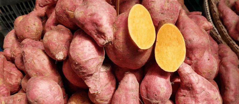 Zoete aardappel voor stamppot 800x350px