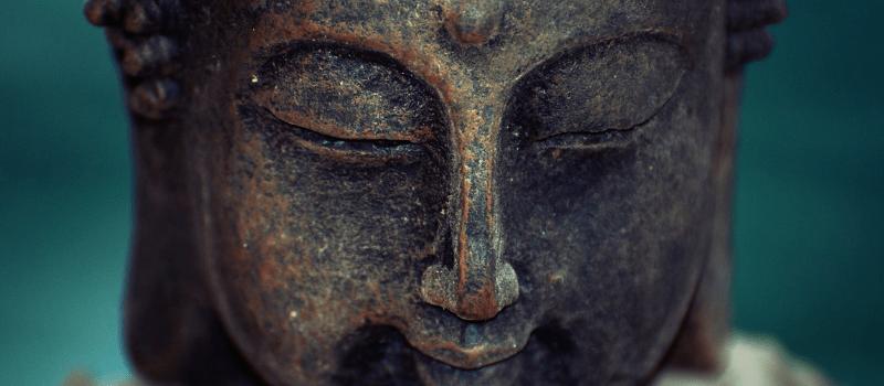 mindfulness boek 800x350px (1)