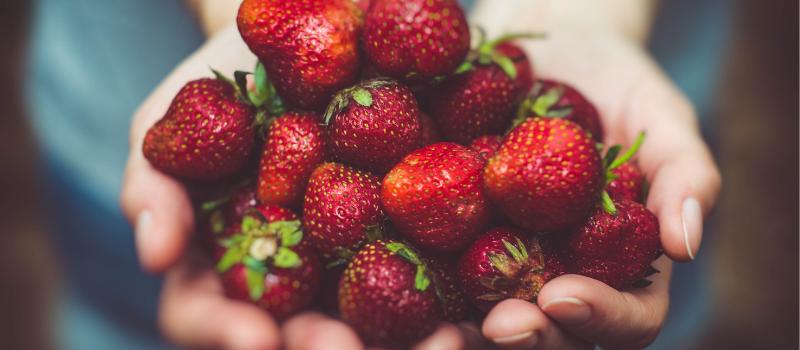 Koolhydraatarme aardbeien kwarktaart maken (1)