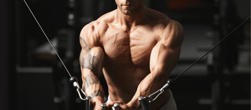 Welke spierversterkers helpen je echt je spieren te versterken (1)